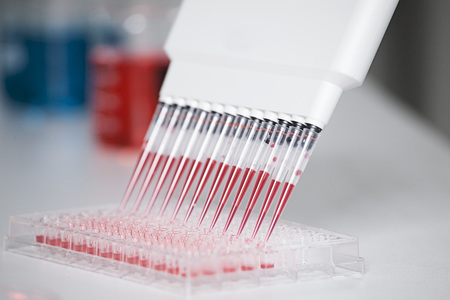 Germany,Bavaria,Munich,Multichannel Pipette Dispensing Red Reagent Into Test Tray For Medical Research