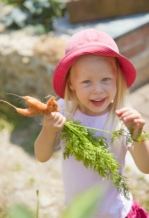 Alemania, baviera, niña, escoger zanahorias, en, jardín LANG_EVOIMAGES
