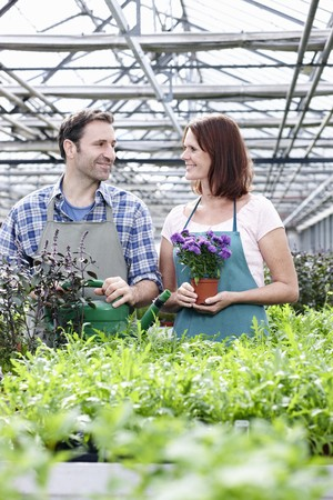Germany,Bavaria,Munich,Mature Man And Woman In Greenhouse With Rocket And Basil Plant