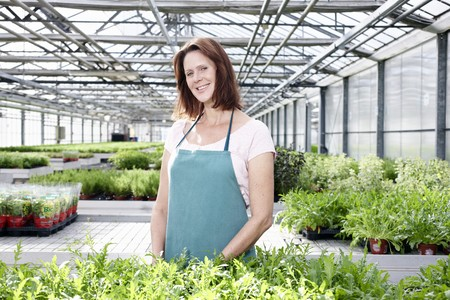 Germany,Bavaria,Munich,Mature Woman In Greenhouse With Rocket Plants