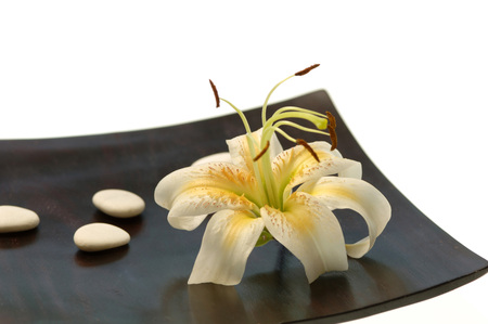 frailty: Lily Blossom And Stones On Table,Close-Up