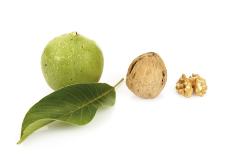 premature: Fresh Walnuts And Leave