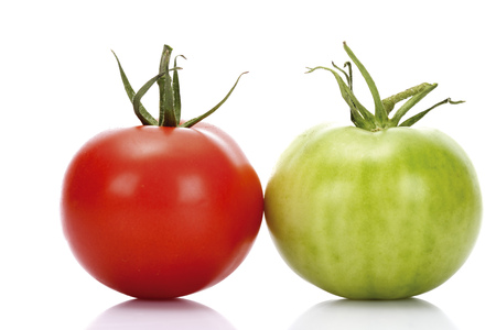 Red And Green Tomato,Close-Up