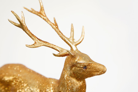 Ornamental Stag,Close-Up