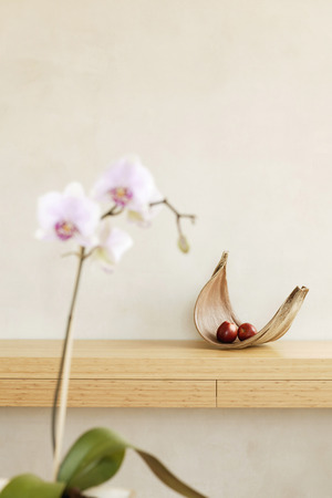 deposition: Fruit Bowl With Apple, Orchid In Foreground