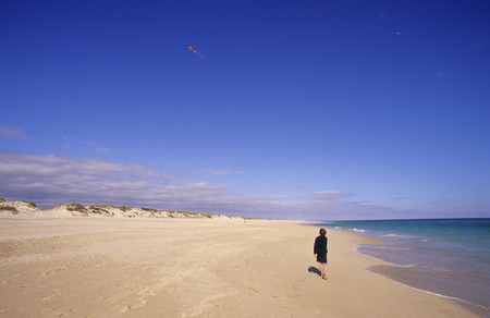 Boy (8-11) Flying Kite On Beach, Rear View LANG_EVOIMAGES