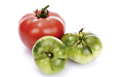 Red And Green Tomatoes,Close-Up