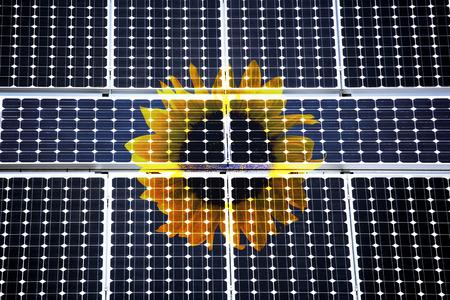 Sun Flower Behind Solar Cells LANG_EVOIMAGES
