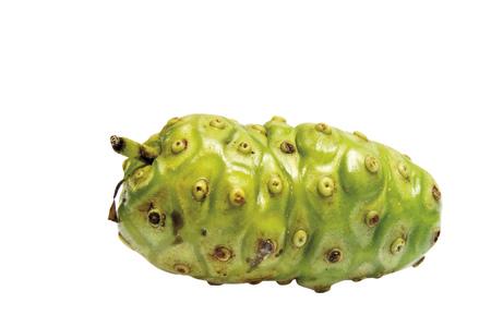 remedial: Single Noni Fruit (Morinda Citrifolia) LANG_EVOIMAGES