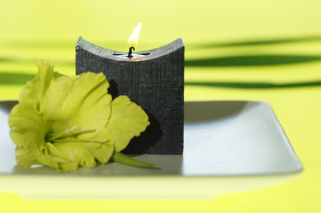 Gladiolus On Plate By Candle