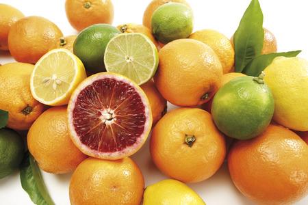 citrons: Various Citrus Fruits, Close-Up