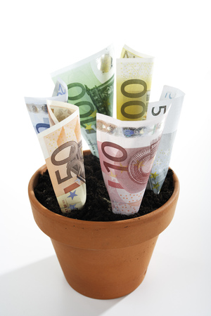 multiplicacion: Euro Notes In Plant Pot