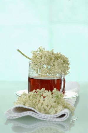 Elderflower Tea LANG_EVOIMAGES