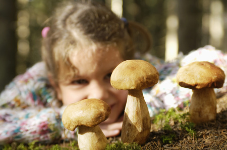 Girl Watching Ceps In Forest