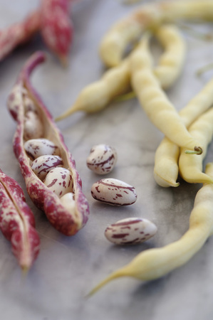 Various Beans And Legumes, Close-Up