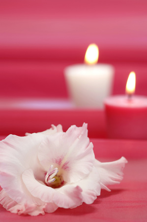 Gladiolus Blossoms, Candles In Background