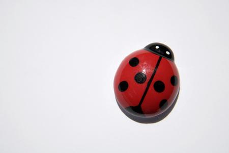 Wooden Ladybug, Close-Up LANG_EVOIMAGES