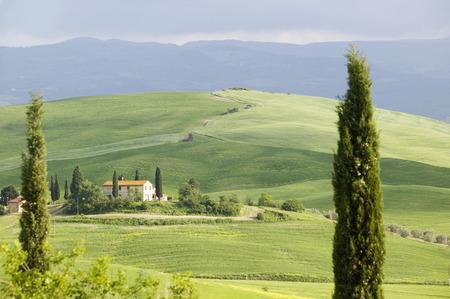 expanse: Italy, Tuscany, Landscape LANG_EVOIMAGES