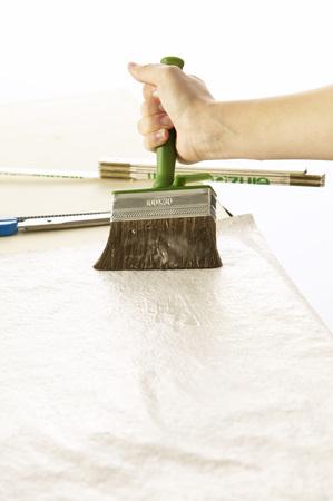 Woman Pastes Wallpaper LANG_EVOIMAGES