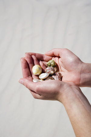 Woman Holding Sea- And Snail-Shells