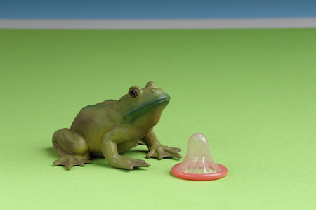 condones: Frog Figurine And A Condom
