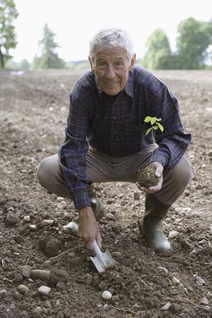 cowering: Man Planting A Seedling