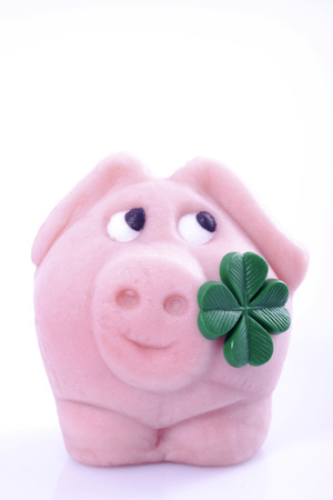 Lucky Pig With Four-Leafed Clover, Close-Up LANG_EVOIMAGES