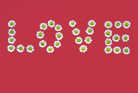 writ: Love Written With Flowers