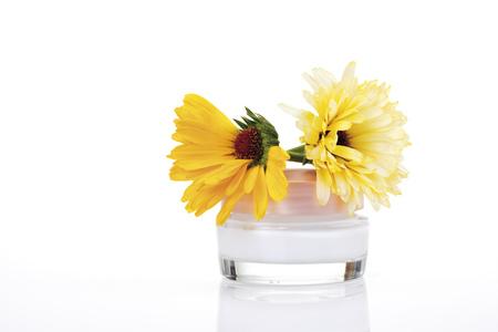 pot marigold: Marigolds And Marigold Cream, Close-Up LANG_EVOIMAGES