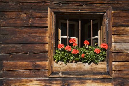 cranesbill: Austria, Tirol, Karwendel, Window With Flower Box