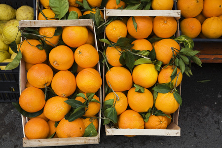 Oranges In Crates, Market Stall, Elevated View