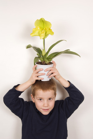 provoking: Boy (10-11) Holding Flower Over Head, Portrait