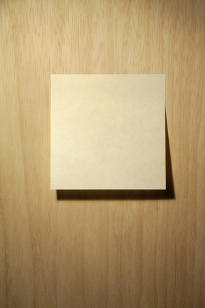 Blank Adhesive Note, Close Up LANG_EVOIMAGES