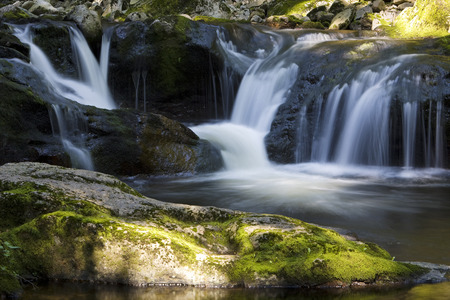 move in: Germany,Bavarian Forest,Brook Buchberger Leite,Waterfall LANG_EVOIMAGES