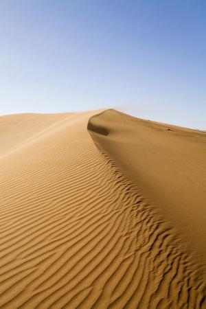 Africa, Namibia, Sand Dunes Of Sossusvlei
