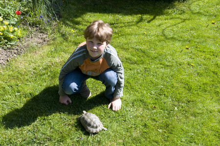 Boy And Turtle In Garden