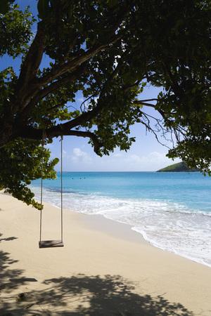 St Vincent, Grenadines, Caribbean, Canouan Island, Glossy Bay, Swing On Tree