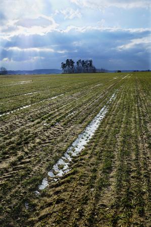 Germany, Bavaria, Erlangen, Field, Frozen Soil LANG_EVOIMAGES