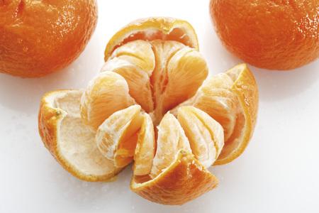 Slices Of Tangerines (Citrus × Aurantium)