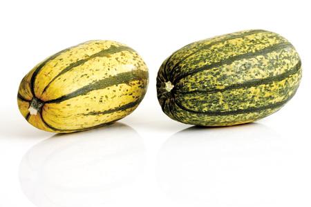 sorts: Pumpkins (Curcurbita Maxima)