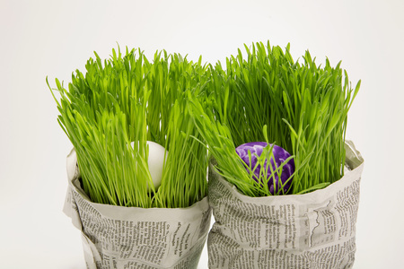 Easter Eggs In Grass, Wrapped Wrapped In Newspaper, Close-Up