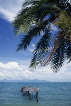 Asia,Thailand,Koh Samui,Ocean View With Boardwalk,Palm Leaf In Foreground LANG_EVOIMAGES