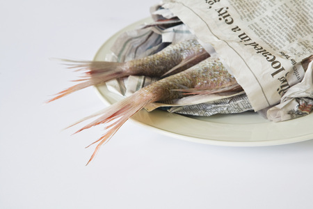 Red Snapper (Lutjanus Campechanus) On Plate,Wrapped In Paper LANG_EVOIMAGES