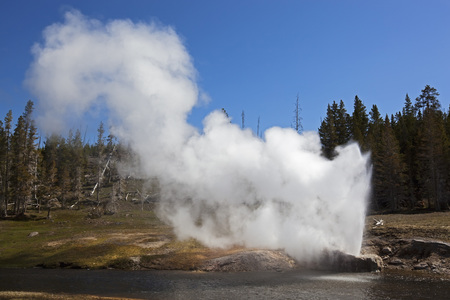 Usa,Yellowstone Park,Riverside Geyser LANG_EVOIMAGES