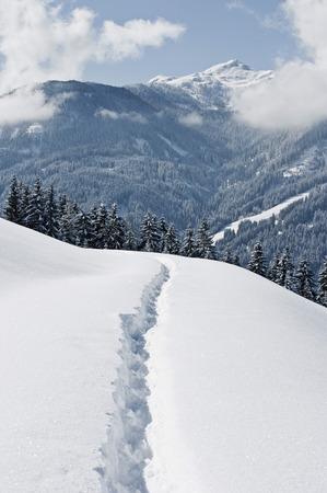 Austria,Salzburger Land,Winter Landscape LANG_EVOIMAGES