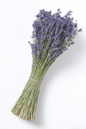 Dried Lavender Bunch,Elevated View LANG_EVOIMAGES