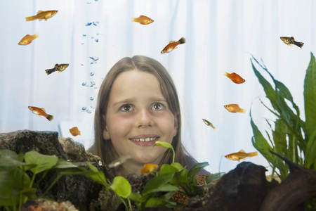 poecilia: Girl (8-9) Watching Fish, View Through Fish Tank LANG_EVOIMAGES