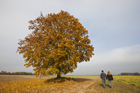 Germany,Bavaria,Couple Walking Hand In Hand,Rear View