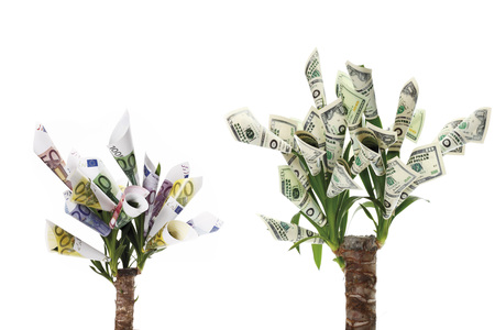 Plant With Flowers Made From Euro And Dollar Notes Against White Background