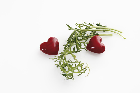 Maca Plant With Hearts On White Background
